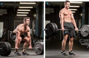 デッドリフトの正しいやり方.腰のケガを防ぐ方法,背中と腰が丸まる